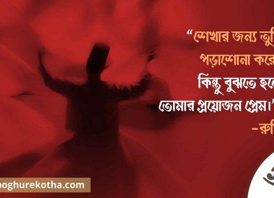 সূফীবাদের গোড়ার কথা সুফি সাধক রুমি